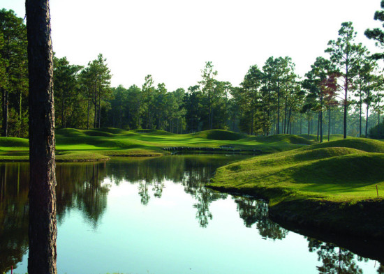 Packages course details for pine forest country club for Club piscine st constant